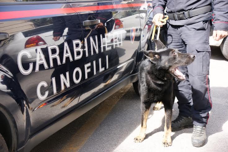 I Carabinieri di Santa Croce Camerina, Vittoria e Ragusa in azione contro lo spaccio di droga
