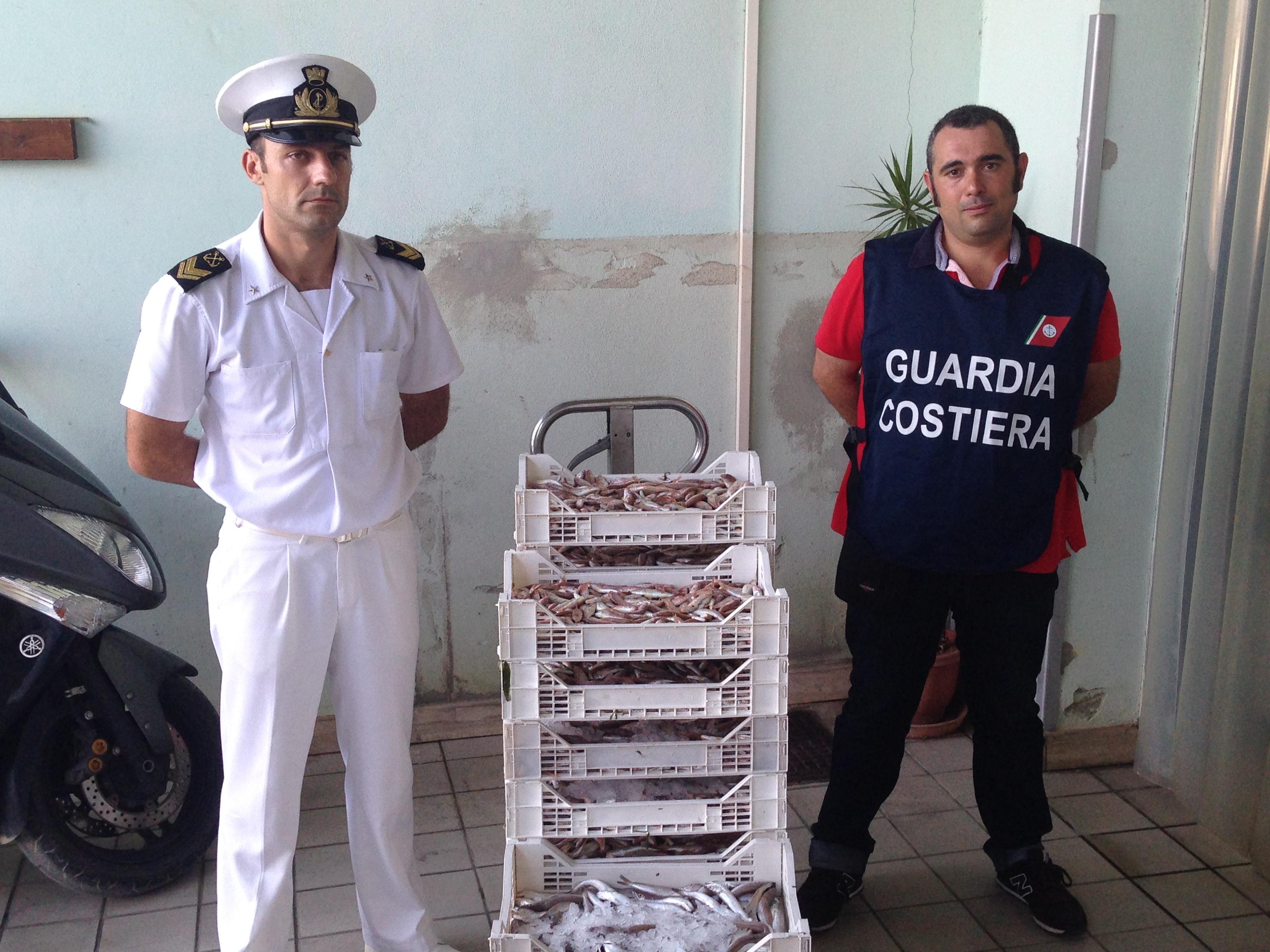 Nuovi controlli al mercato ittico di Scoglitti, sequestrati 120 kg. di prodotti ittici sottomisura