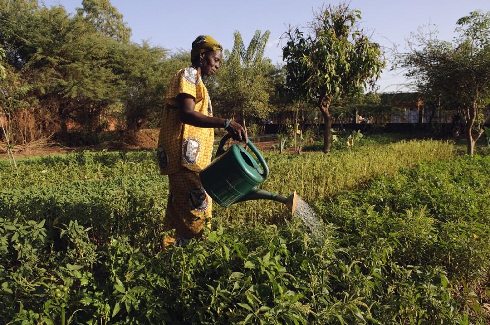 10.000 orti per il futuro dell'Africa