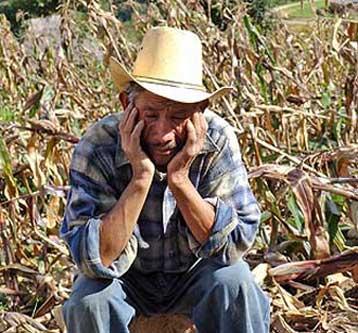 Crisi agricola immagine simbolica