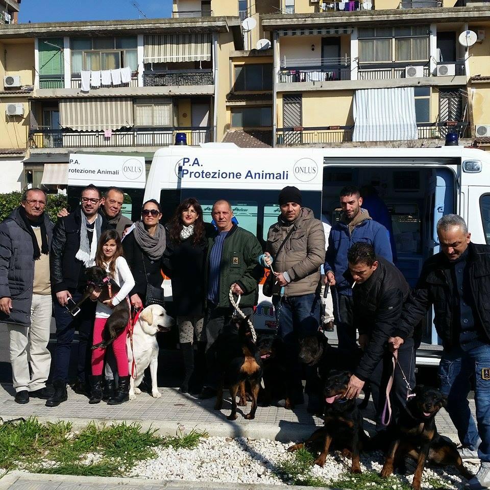Catania. Campagna contro il randagismo: in piazza San Marco a Librino microchippati, gratuitamente, 45 cani grazie a: Comune, Dipartimento di Prevenzione Veterinaria dell'Asp, Ente Nazionale Protezione Animali e Nova Entra.