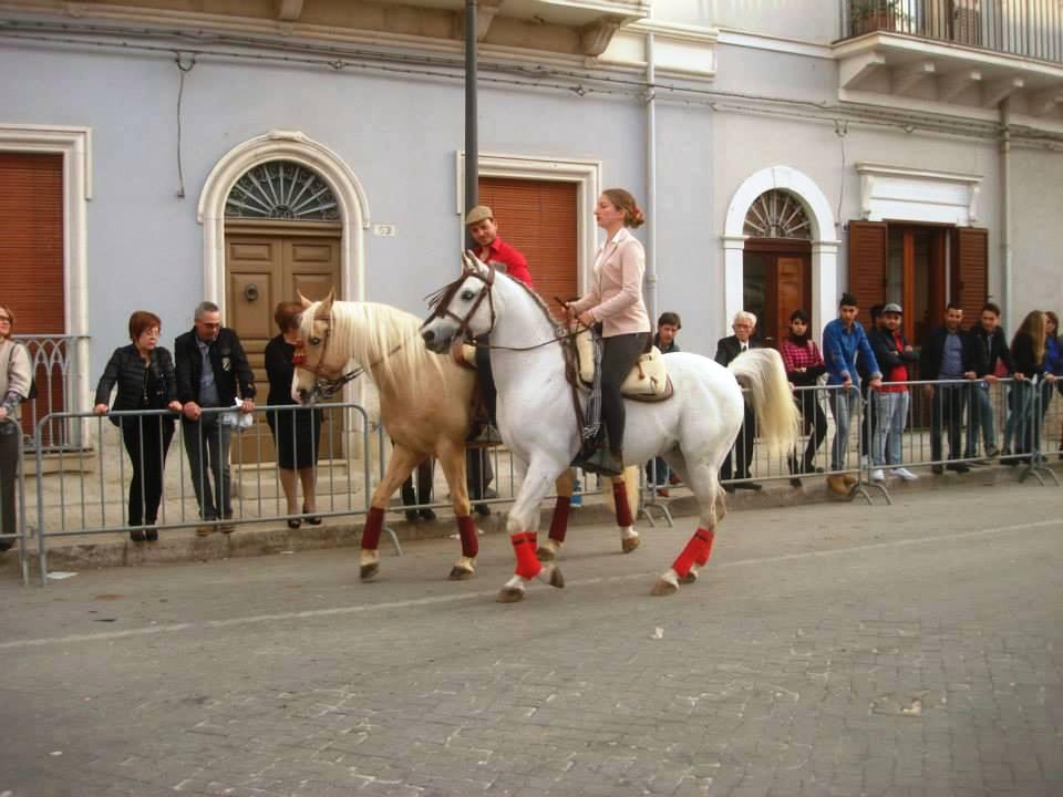 Acate. San Vincenzo Martire tra fede e folklore.