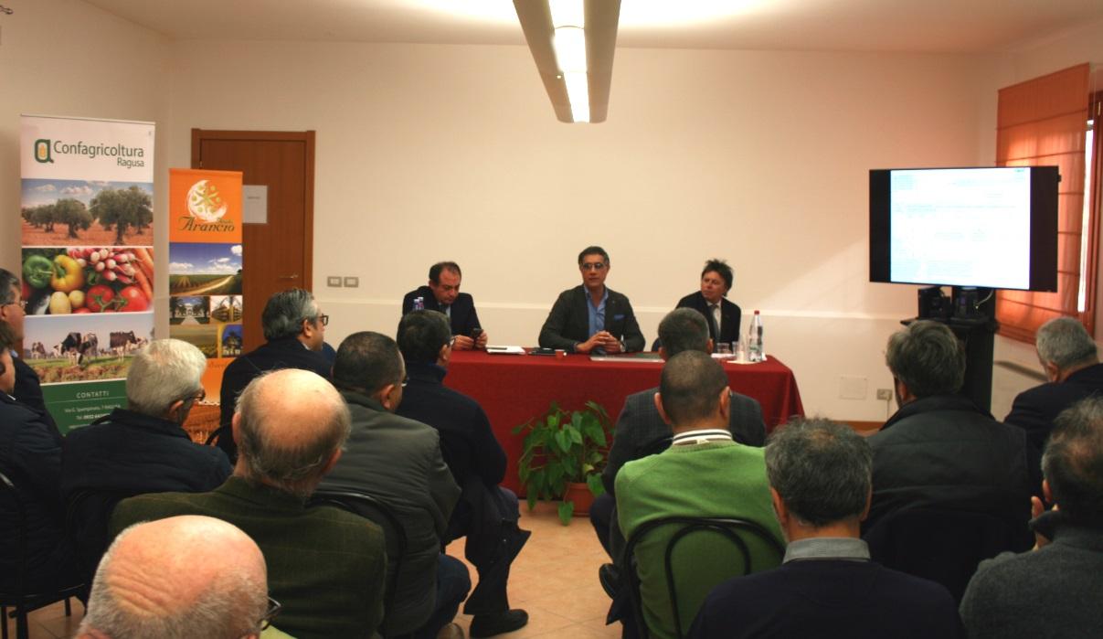 Agricoltura: Nuove disposizioni per i vigneti e nuove opportunità per la Sicilia