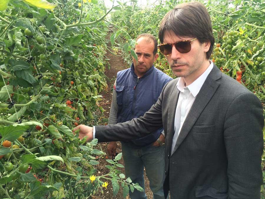Crisi agricola: Eurodeputato M5S visita campagne Pachino ed agrumicolo