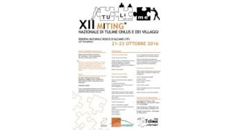 Tu-li(lui/lei)-me: XII Miting nazionale di Tulime Onlus ad Alcamo