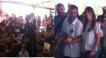 """Istituto Zooprofilattico: """"Curate 200 tartarughe in 3 anni, la Caretta Elisa torna in mare"""""""