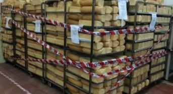 Bologna, carabinieri chiudono due aziende alimentari per gravi carenze igienico sanitarie