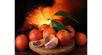 Nozze d'argento per la Fruitlogistica di Berlino: presente il consorzio di tutela arancia rossa di Sicilia IGP