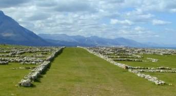Termini Imerese, l'urbanistica delle città greche al Corso di Archeologia organizzato da SiciliAntica