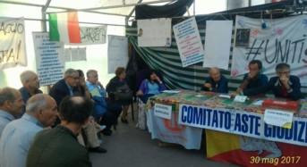 """Vittoria. Tavolo Verde Sicilia: """"Solidarietà a Rosetta Piazza, l'imprenditrice che da 14 giorni prosegue lo sciopero della fame"""""""