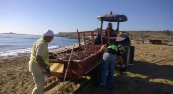 Pulizia spiagge: Interventi da Marzamemi a Granelli