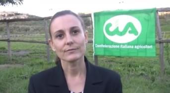 La direzione regionale della CIA Sicilia denuncia questioni gravi e di assoluta emergenza: Siccità, consorzi di bonifica, viabilità e AGEA