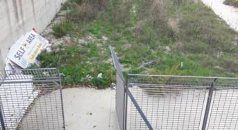 """Ragusa. Denuncia di Mario D'Asta: """"Lo stadio G. Biazzo di Ragusa e l'annessa area riservata allo sgambettamento per cani versano nel degrado"""""""