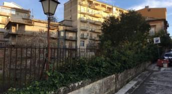 I cespugli continuano a crescere a vista d'occhio sul Ponte Vecchio. La denuncia di Ragusa in Movimento