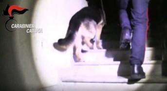 Catania, blitz dei Carabinieri nel fortino della droga. 36 arresti, circa 100 le perquisizioni – FOTO e VIDEO
