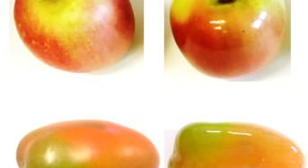 Ricerca Università di Pisa: Dal riciclo degli scarti, rivestimenti edibili per conservare meglio la frutta