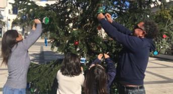 """Ragusa. Nicita: """"Se il Comune non ha soldi, ci pensano i cittadini ad addobbare gli alberi di Natale"""""""