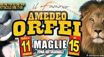 Continua lo strepitoso tour nel Salento del Circo Amedeo Orfei. Tappa a Maglie dall' 11 al 15 gennaio