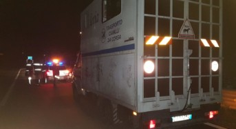 Intensa attività delle pattuglie della Polizia Stradale di Agrigento