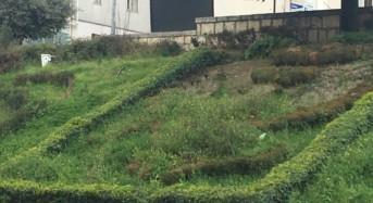 """Nicita: """"A pezzi un altro simbolo della città di Ragusa"""""""
