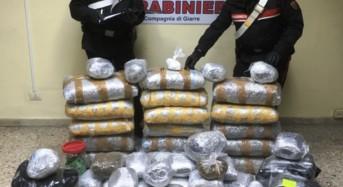Detenevano a casa oltre 130 kg di marijuana e 200 grammi di cocaina. Due Arresti a Riposto
