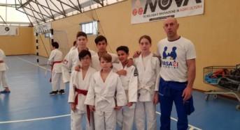 Judo. Medaglia d'oro e due d'argento per la squadra agonistica della scuola Basaki di Ragusa domenica scorsa impegnata nelle gare di Coppa Sicilia a Scicli