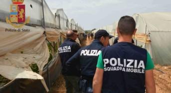 Vittoria. Caporalato: La Polizia di Stato arresta 4 imprenditori agricoli e ne denuncia altri 4