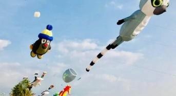 """Marina vola. Pro Loco Mazzarelli: """"Con gli aquiloni hanno preso il volo i nostri sogni"""""""