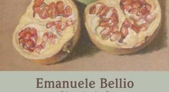 """Emanuele Bellio ritorna con """"un'Antologica"""": Opere dal 1981 al 2018 a cura di Amedeo Fusco"""