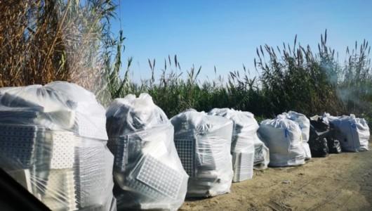 Acate. Lettera aperta all'assessore comunale all'Ambiente ed all'Ecologia da parte dell'ambientalista Riccardo Zingaro. Riceviamo e pubblichiamo.