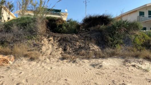 """Incendi dolosi dune Casuzze. L'appello del comitato """"Casuzze: salviamo le dune e la spiaggia"""""""