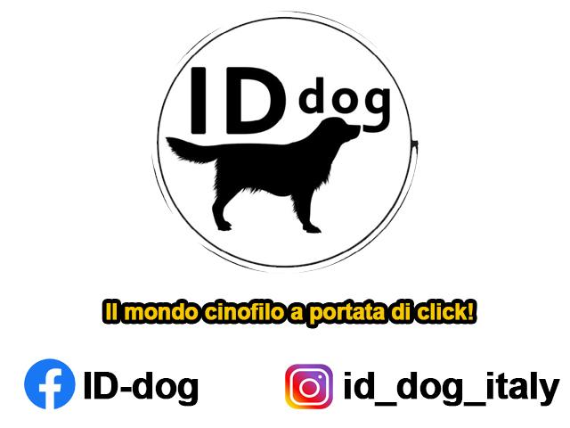 Id Dog